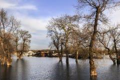 Översvämmat land med att sväva hus på Sava River - nya Belgrade - Arkivbild
