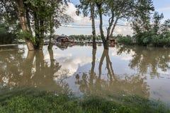 Översvämmat land med att sväva hus på Sava River - nya Belgrade - Royaltyfri Fotografi