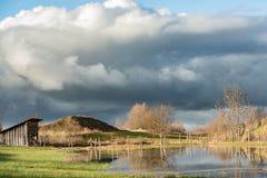 Översvämmat landskap med hatten framme av grå himmel i Tyskland Bayern arkivbild