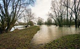 Översvämmat landskap tack vare nivån för högt vatten i den närgränsande rien Royaltyfri Foto