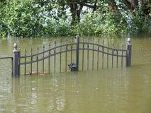 Översvämmat staket royaltyfria bilder