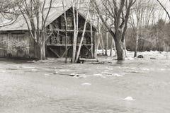 översvämmat ut Arkivfoton
