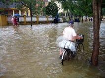 översvämning vietnam Arkivbilder