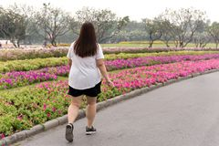 Överviktig kvinna som går i parkera royaltyfria bilder