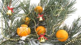 Övervintra bakgrund av mandarinen för nytt år och jul Royaltyfria Foton