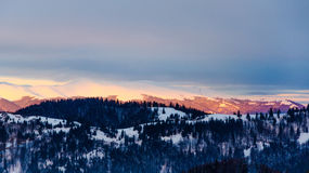 Övervintra bergsikten på gryning, snöa bästa berg, gröna träd Fotografering för Bildbyråer