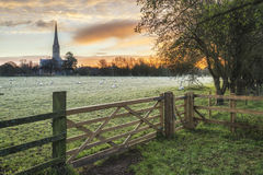 Övervintra den frostiga staden för den soluppgånglandskapSalisbury domkyrkan i Engl Royaltyfria Foton