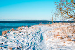 Övervintra den soliga dagen nära havet, snö Royaltyfria Foton