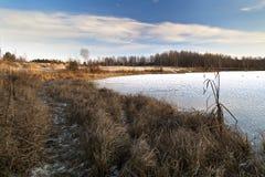 Övervintra den soliga dagen på kusten av en djupfryst sjö Arkivfoto