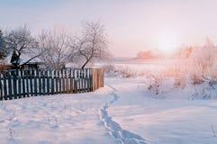 Övervintra det lantliga landskapet i solig solnedgångtid - övervintra byn bland snöig träd under solljus Arkivfoton