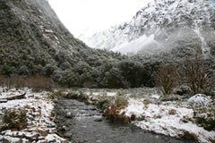 Övervintra flodplatsen i den Fiordland nationalparken, Nya Zeeland Fotografering för Bildbyråer