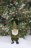 Övervintra gnomen som framme står av en Holly Tree i snön Royaltyfria Bilder