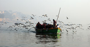 Övervintra i Varanasi Arkivfoton