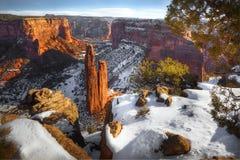 Övervintra Kanjon de Chelly den nationella monumentet, Arizona arkivbilder