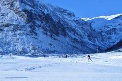Övervintra landskap i bergen, Österrike, Europa Arkivbild