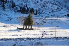 Övervintra landskap i bergen, Österrike, Europa Fotografering för Bildbyråer