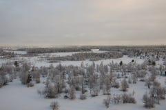Övervintra landskape med skogen i insnöat aftonsolnedgången norr Arkivfoto