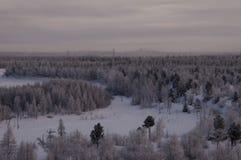 Övervintra landskape med skogen i insnöat natten norr Royaltyfri Bild