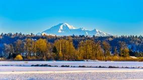 Övervintra landskapet av Fraser Valley i British Columbia, Kanada med monteringsbagaren för den latenta vulkan i bakgrunden royaltyfria bilder