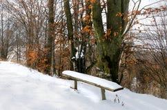 Övervintra landskapet, bänken under snön, träd med gula sidor Arkivbilder