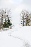 Övervintra landskapet, bana till överkanten av det snöig berget, Arkivbild