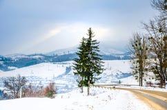 Övervintra landskapet, den snö täckte vägen i bergen med träd Royaltyfri Fotografi