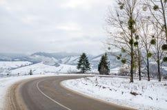 Övervintra landskapet, den snö täckte vägen i bergen med träd Royaltyfria Bilder
