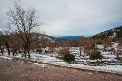 Övervintra landskapet i bergen nära Vassa, Grekland royaltyfria foton