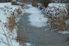 Övervintra landskapet med den djupfrysta kanalen och snöa lite varstans Royaltyfri Bild