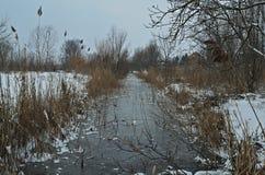 Övervintra landskapet med den djupfrysta kanalen och snöa lite varstans Royaltyfria Foton