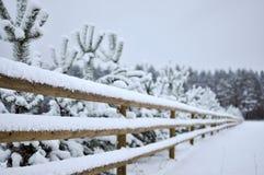 Övervintra landskapet med den snöig skogen och ett trästaket Arkivbild