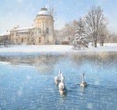 Övervintra landskapet med snö, slotten och svanar royaltyfri fotografi