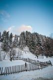 Övervintra landskapet med snöade träd, vägen och trästaketet Kulle som täckas av snö på bygd Kall vinterdag med blå himmel Royaltyfria Bilder