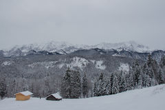 Övervintra landskapet med trähus, träd och berg på bakgrund nära Garmisch-Partenkirchen germany Royaltyfria Foton