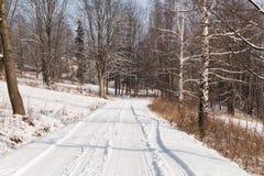 Övervintra landskapet med vägskogen och blå himmel vintrig bana Frostig solig dag snöig winterly landskap arkivfoto