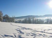 Övervintra landskapet med vägskogen och blå himmel vintrig bana Frostig solig dag snöig winterly landskap royaltyfria bilder