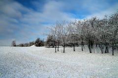Övervintra landskapet på den Khortitsa ön i Zaporizhzhia Royaltyfri Foto