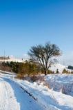 Övervintra landskapet, snö-korkade berg, träd på en bakgrundsnolla Arkivbild