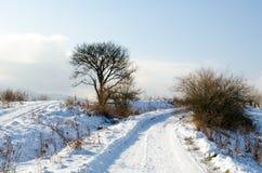 Övervintra landskapet, snö-korkade berg, träd på en bakgrundsnolla Royaltyfria Bilder