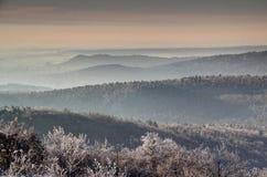 Övervintra morgonen i Buda Hills och den bergiga Budapest Ungern Arkivbilder