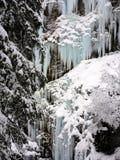 Övervintra is och snöa underland i lös natur i fjällängarna Arkivfoton