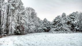 Övervintra platsen av snö på ett fält och träd Royaltyfria Bilder
