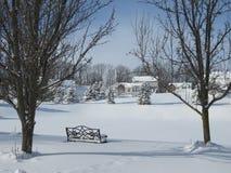 Övervintra platsen i central tyst och fridsam vit för den New York staten, royaltyfria foton