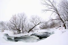 Övervintra sceniskt av floden Krynka, den Donetsk regionen, Ukraina Arkivbild