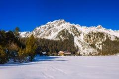 Övervintra sikten av den is- sjön i höga Tatras, Slovakien Fotografering för Bildbyråer