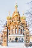 Övervintra sikten av kyrkan av frälsaren på blod i St Petersburg Royaltyfri Fotografi