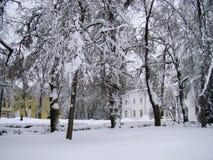 Övervintra sikten på de klassiska vit- och gulinghusen Royaltyfria Bilder