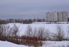 Övervintra, snöa, landskap, förkylning, skogen, trädet, naturen, is, himmel, frost, floden, sjön, träd, vatten, vit, säsongen som Royaltyfri Bild