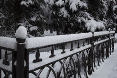 Övervintra, snöa på staketfndträdet Arkivfoto