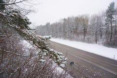 Övervintra snövägen i staden med många träd Vinter snö Arkivbilder